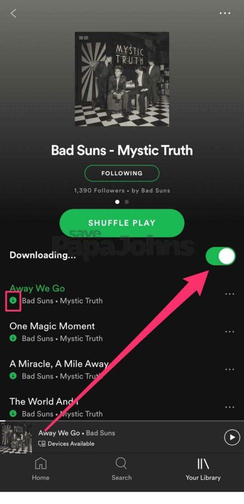Spotify Premium Mod