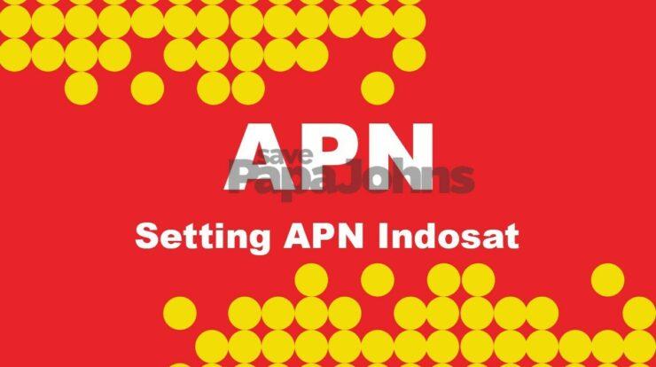 APN Indosat